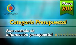 Slide10042015-CategoriaPresupuestal-Plazos-s