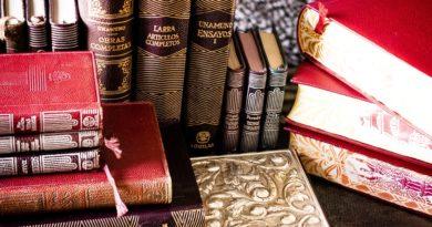 23 de Abril, Dia Internacional del Libro, por Elsa C.