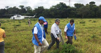 Consejo de Seguridad de la ONU admira el compromiso de Colombia con el proceso de paz