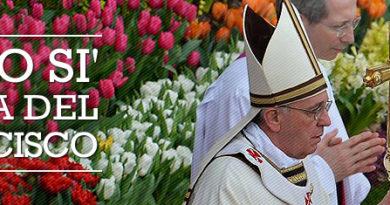 Santa misa del @Pontificex_es Francisco en la Jornada Mundial de los pobres