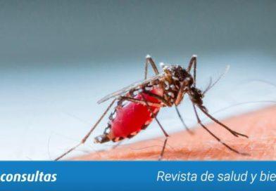 Vacunarse contra la fiebre amarilla, antes de viajar al Brasil