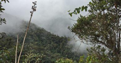 Comienza la ambiciosa expedición Colombia Bio Apaporis 2018