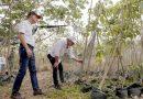 22.000 nuevos árboles para el departamento: @Gobatlantico , vía @TecnoglassSA